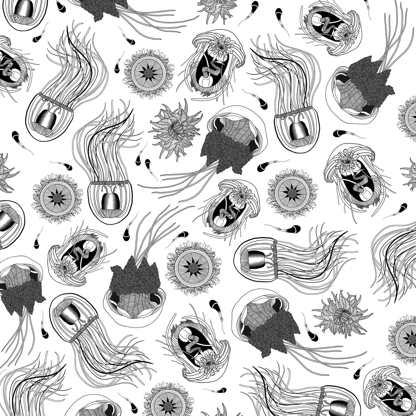01 pattern