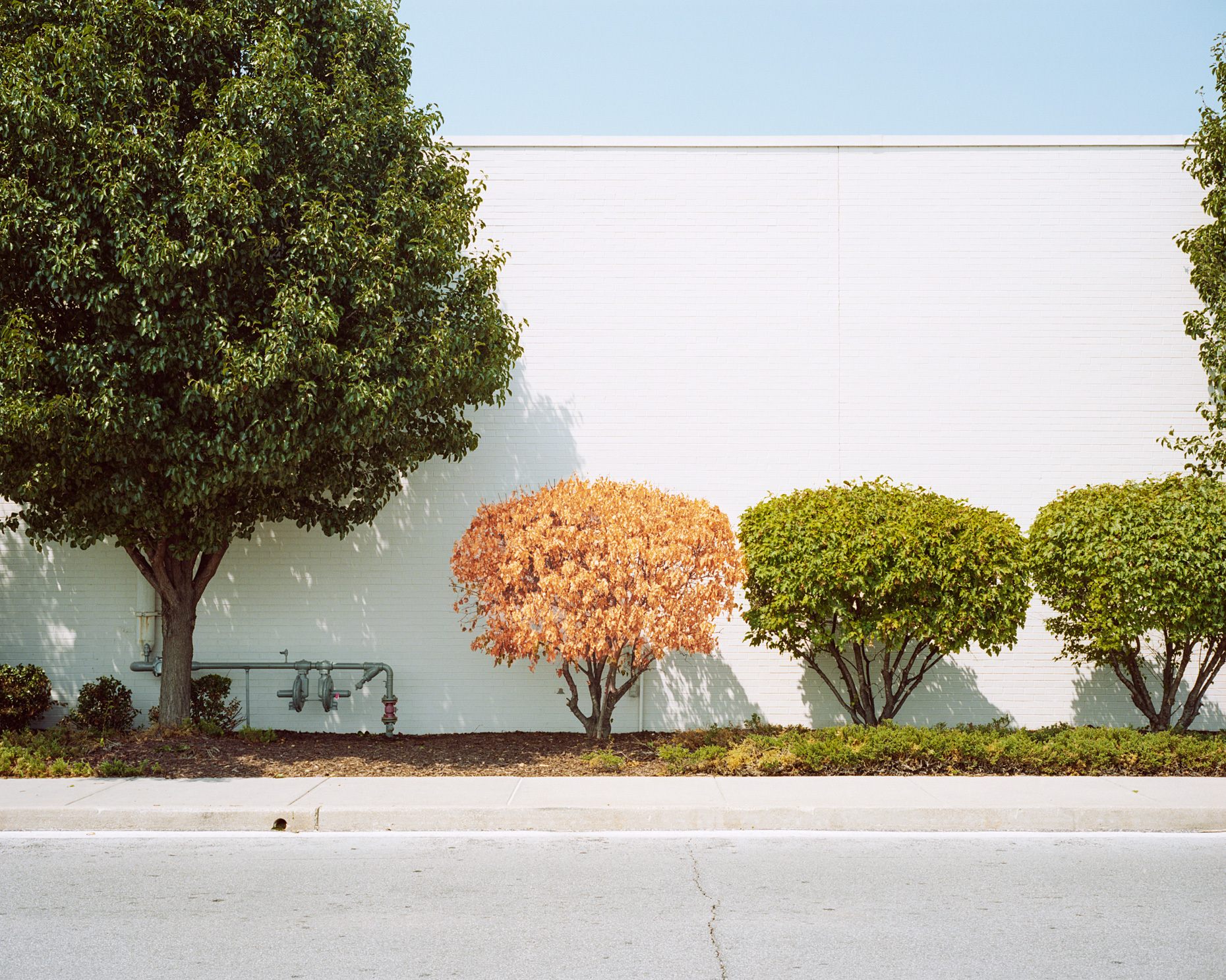 Rieser environments 14